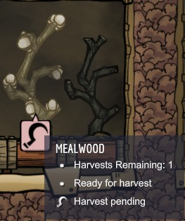 mealwood.png