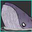 Mod_Pets SW_Whale.png